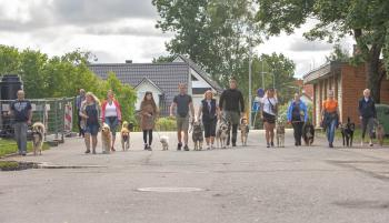 Vrumaa-koeraomanikud-kogusid-taas-toetust-varjupaigas-peatuvatele-loomadele-1