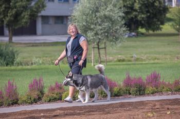 Vrumaa-koeraomanikud-kogusid-taas-toetust-varjupaigas-peatuvatele-loomadele-14