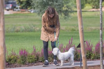 Vrumaa-koeraomanikud-kogusid-taas-toetust-varjupaigas-peatuvatele-loomadele-15