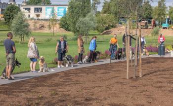 Vrumaa-koeraomanikud-kogusid-taas-toetust-varjupaigas-peatuvatele-loomadele-16