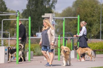 Vrumaa-koeraomanikud-kogusid-taas-toetust-varjupaigas-peatuvatele-loomadele-7