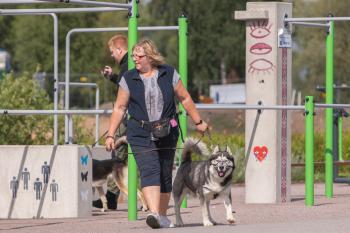 Vrumaa-koeraomanikud-kogusid-taas-toetust-varjupaigas-peatuvatele-loomadele-8