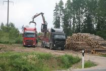b3e44035fec Metsamaterjali laadimine autole üleeile Võru vallas Räpina maantee ääres.  Foto: INNO TÄHISMAA